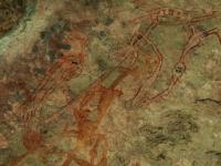 Canguro - Scrittura rupestre nel Kakadu National Park nella zona di Ubir - la più antica risale a 20.000 anni fa (Australia)