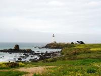 Faro - Costa californiana