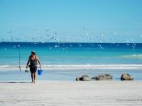 Fisher - Troppi concorrente per questo pescatore sulla spiaggi di Broome (Australia)