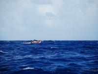 Pescatori - Un piccolo gozzo sfida l'oceano Indiano per una battuta di pesca