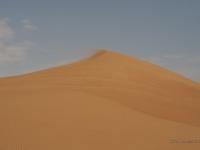 Duna nel deserto
