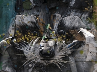 Bordalo street art Lisbon