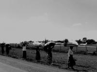 Portatrici - In Africa è facile vedere le donne che marciano lungo le strade per portare, a modo loro, secchi d'acqua e quasi ogni cosa (Tanzania)