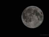 """La """"superluna"""" della notte del perigeo del 10 agosto 2014 - dal terrazzo di casa mia, e poi, l'ammetto, rielaborata per evidenziare le valli e i crateri lunari e i colori altrimenti """"sbiancati"""" dalla luminosità... ci voleva un bel telescopio!!"""
